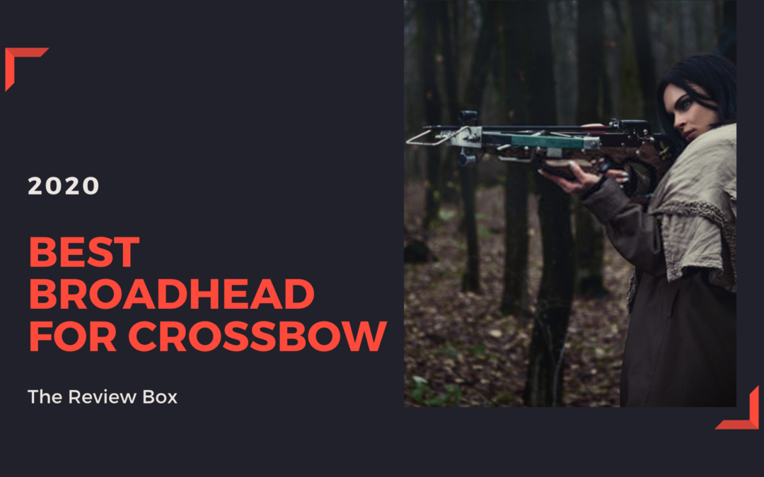 Best Broadhead for Crossbow 2020 Reviewed – Top Crossbow Broadheads