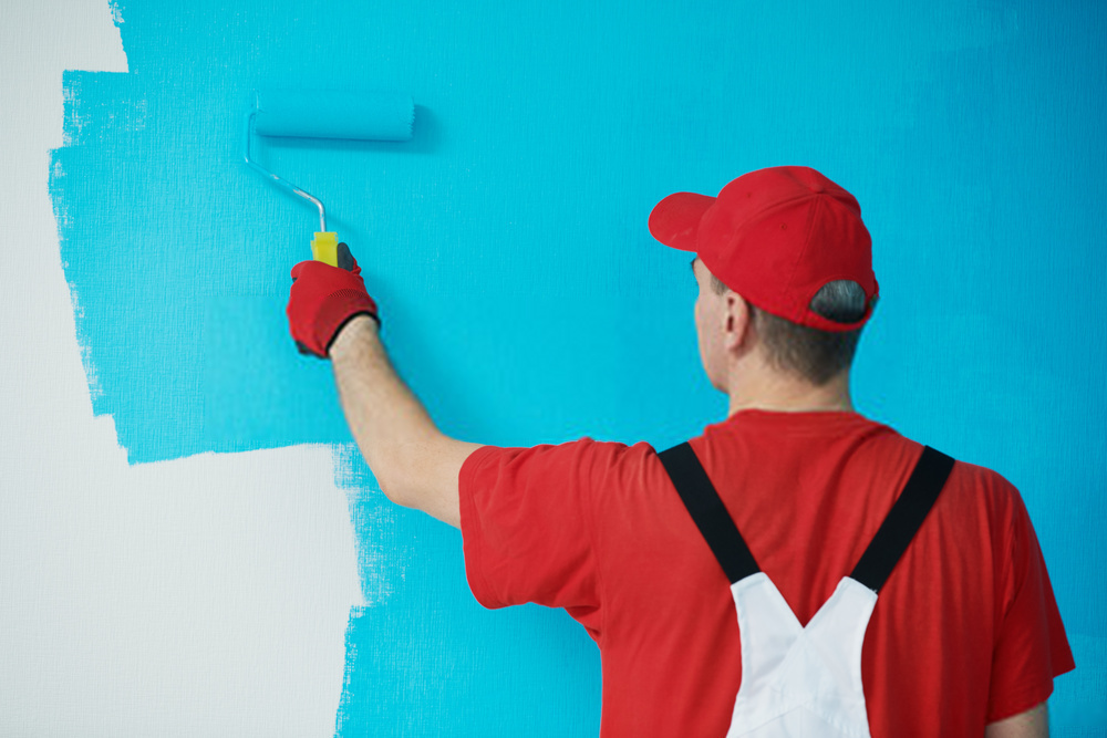 Best Drywall Primer 2020 | Top 5 Paint Primers Reviewed | Buying Guide