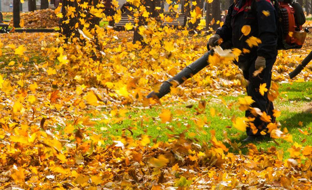 Best Leaf Vacuum Mulcher 2020 | Top Leaf Blowers Reviewed | Buying Guide